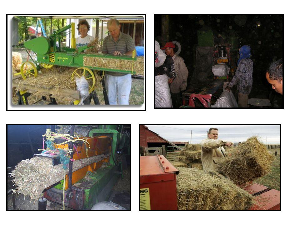 Kehilangan Nutrisi dalam Pembuatan Hay Kehilangan terjadi dalam proses pembuatan, terutama saat panen, pengeringan dan pemindahan hay ke tempat penyimpanan.