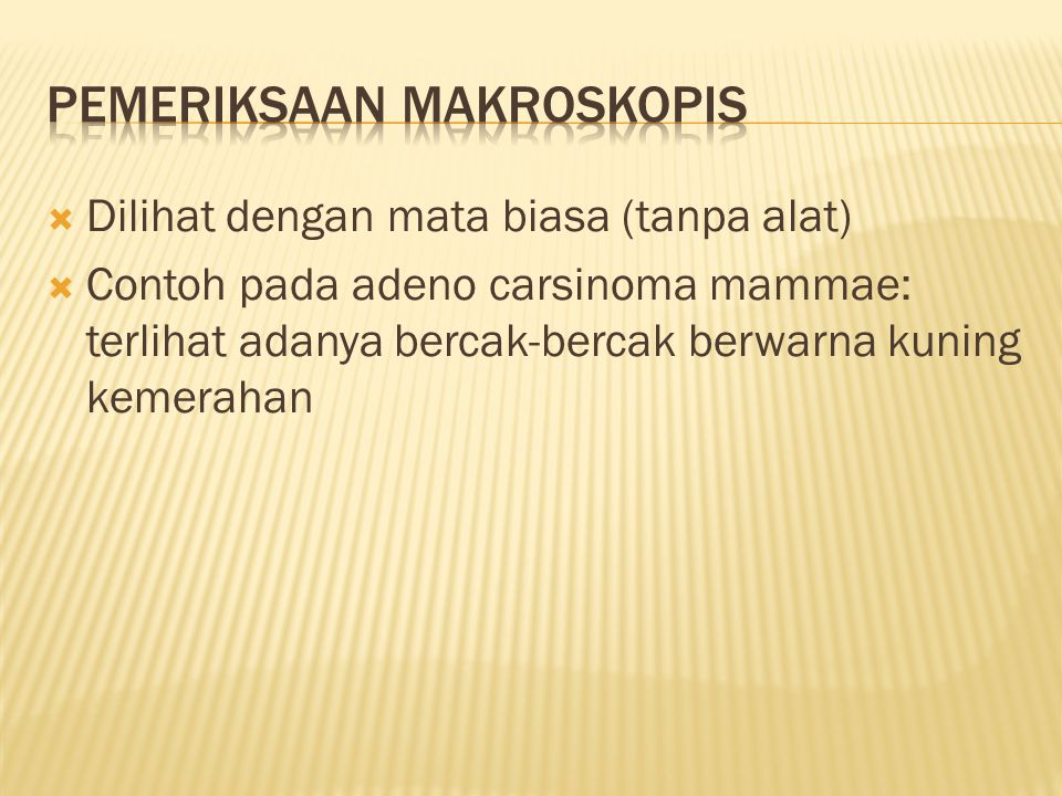  Dilihat dengan mata biasa (tanpa alat)  Contoh pada adeno carsinoma mammae: terlihat adanya bercak-bercak berwarna kuning kemerahan