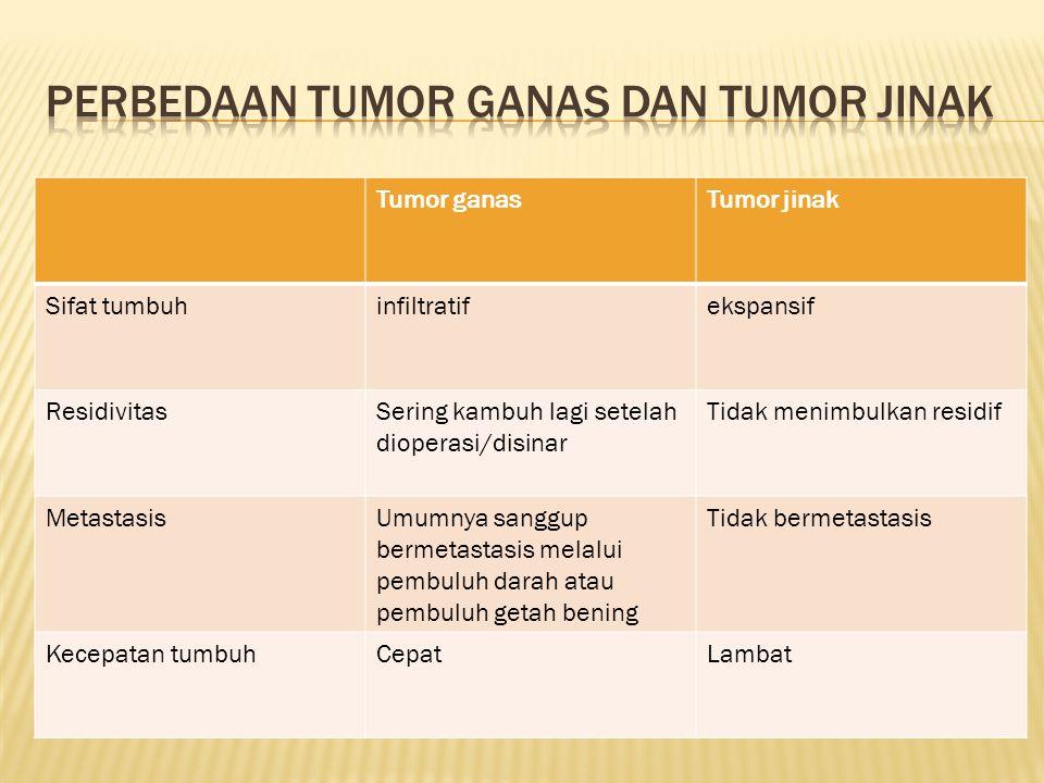 Tumor ganasTumor jinak Diferensiasi (derajad morfologi sel tumor menyerupai sel normal) Berdiferensiasi burukBerdiferensiasi baik (masih menyerupai sel normal) Polaritas (susunan tertentu sel-sel dalam jaringan ) Misal : epidermis tersusun oleh sel-sel lapisan basal, lapisan, spinosem, granulosum Hilang polaritas (susunan sudah tidak teratur lagi) Polaritas masih baik MortalitasJika tidak diobati, meskipun letaknya pada organ tak vital dapat menyebabkan kematian Biasanya tidak menyebabkan kematian bila letaknya tidak pada alat tubuh yang vital