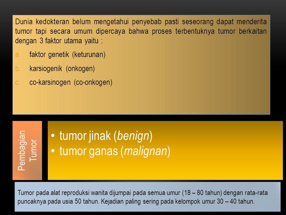 Dunia kedokteran belum mengetahui penyebab pasti seseorang dapat menderita tumor tapi secara umum dipercaya bahwa proses terbentuknya tumor berkaitan