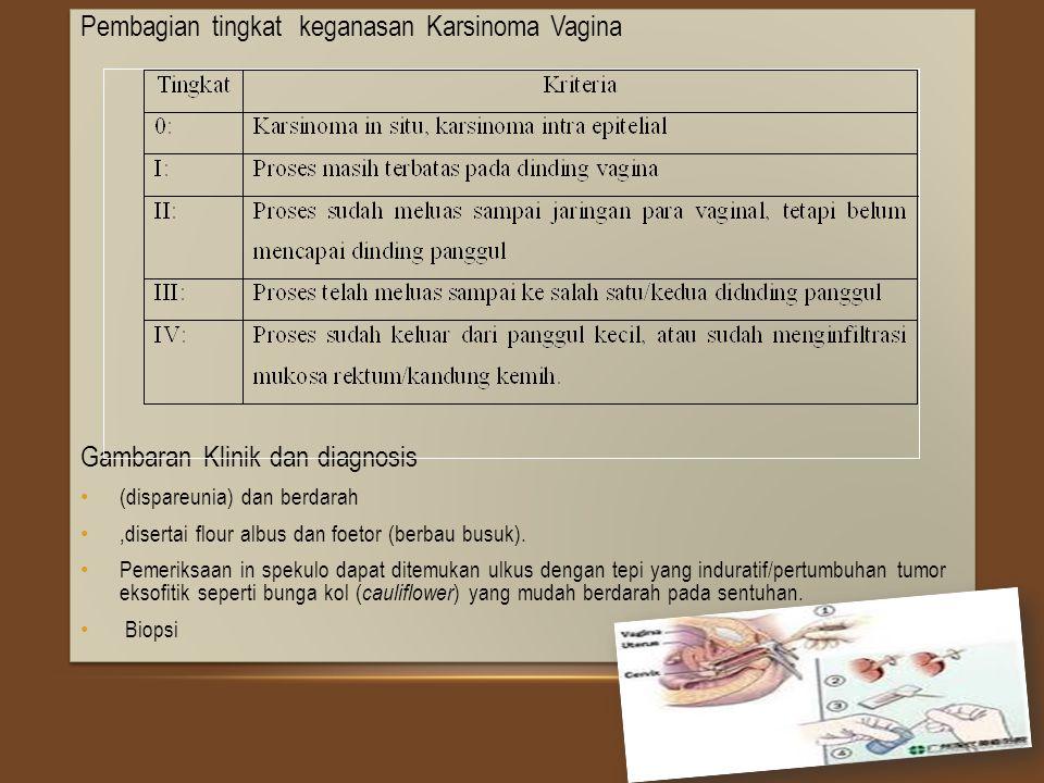 Penanganan Karsinoma Vagina tingkat 0, dapat dilakukan vaginektomi, elektrokoterisasi, bedah krio (cryo- surgery), penggunaan sitostatika topikal atau laser.
