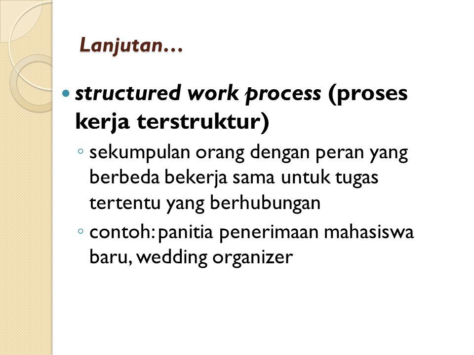 Lanjutan… structured work process (proses kerja terstruktur) ◦ sekumpulan orang dengan peran yang berbeda bekerja sama untuk tugas tertentu yang berhubungan ◦ contoh: panitia penerimaan mahasiswa baru, wedding organizer