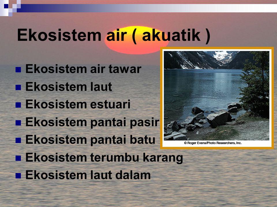 Ekosistem air ( akuatik ) Ekosistem air tawar Ekosistem laut Ekosistem estuari Ekosistem pantai pasir Ekosistem pantai batu Ekosistem terumbu karang Ekosistem laut dalam
