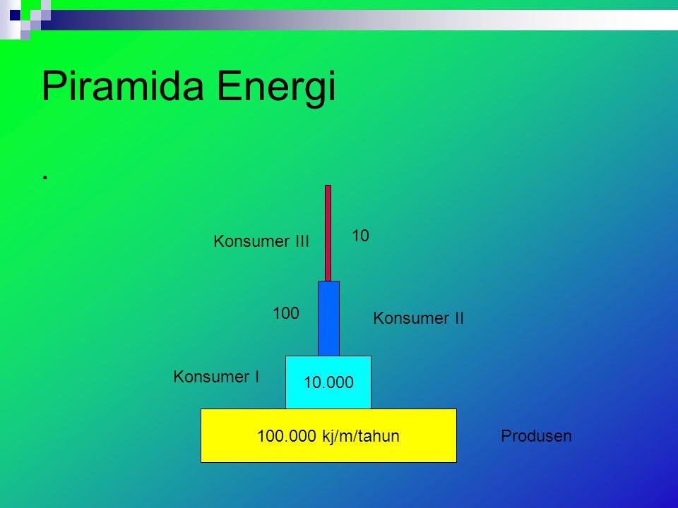 Piramida Energi. 100.000 kj/m/tahun 10.000 Produsen Konsumer I Konsumer II Konsumer III 100 10