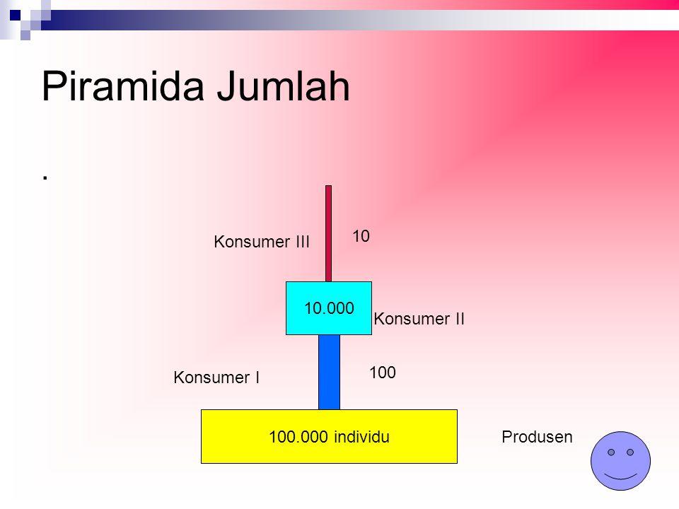 Piramida Jumlah. 100.000 individu 10.000 Produsen Konsumer I Konsumer II Konsumer III 100 10