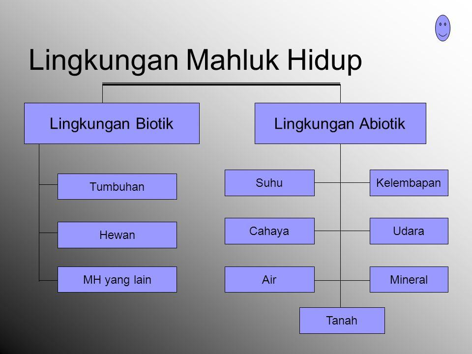 Interaksi MH dengan lingkungannya Interaksi Antar Individu ( ruang populasi ) Interaksi Antar Populasi ( ruang komunitas ) Interaksi Antara Komponen Biotik dan Abiotik ( ruang ekosistem atau biosfer )