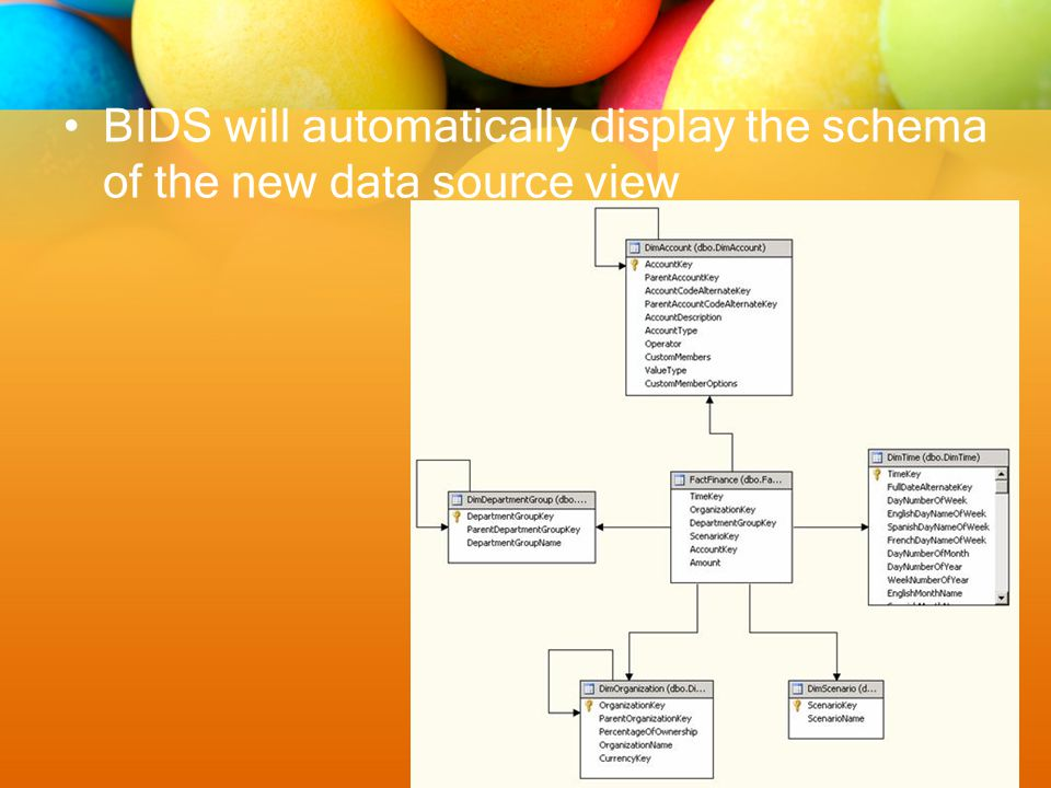 BIDS will automatically display the schema of the new data source view