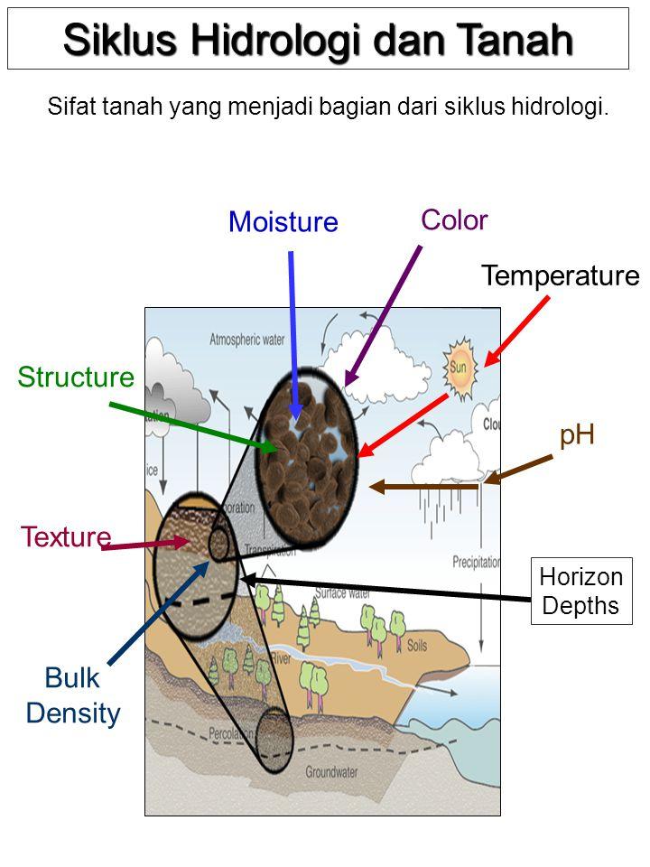 Siklus Hidrologi dan Tanah Color Structure Bulk Density Texture pH Temperature Moisture Horizon Depths Sifat tanah yang menjadi bagian dari siklus hid