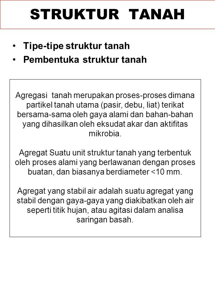 Tipe-tipe struktur tanah Pembentuka struktur tanah STRUKTUR TANAH Agregasi tanah merupakan proses-proses dimana partikel tanah utama (pasir, debu, lia
