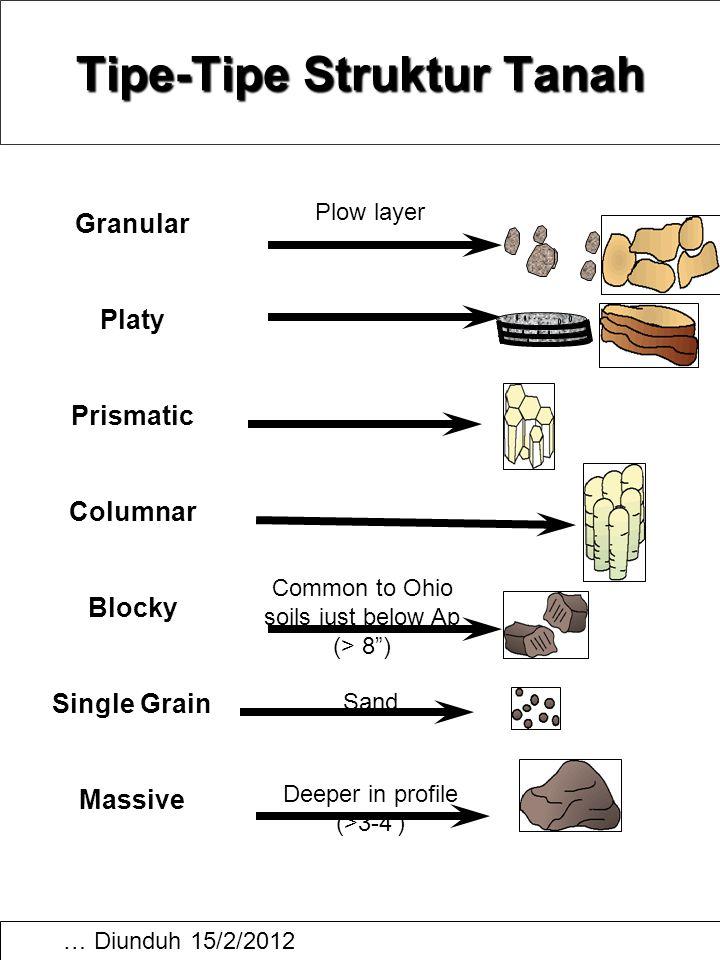 "… Diunduh 15/2/2012 Tipe-Tipe Struktur Tanah Common to Ohio soils just below Ap (> 8"") Plow layer Sand Deeper in profile (>3-4') Granular Platy Prisma"