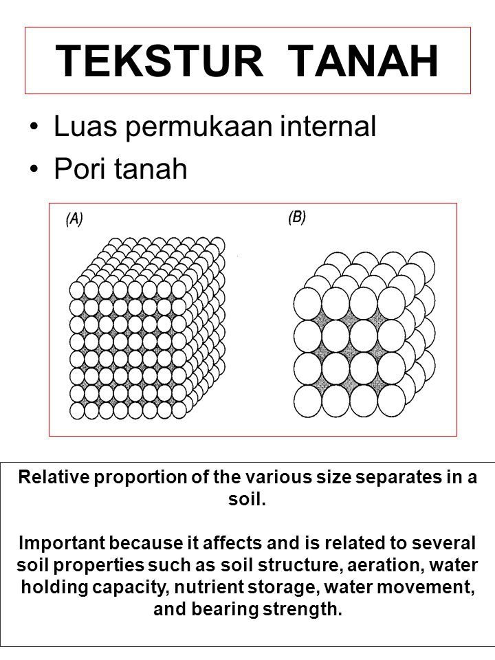 TEKSTUR TANAH Luas permukaan internal Pori tanah Relative proportion of the various size separates in a soil. Important because it affects and is rela