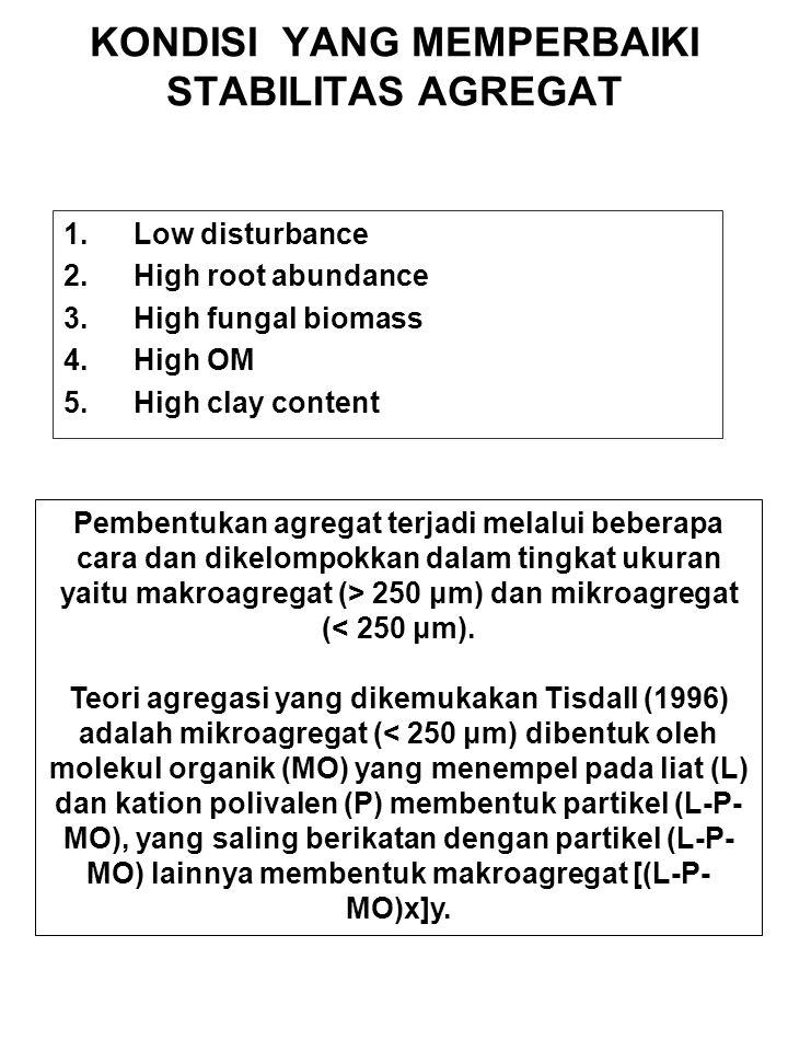 KONDISI YANG MEMPERBAIKI STABILITAS AGREGAT 1.Low disturbance 2.High root abundance 3.High fungal biomass 4.High OM 5.High clay content Pembentukan ag