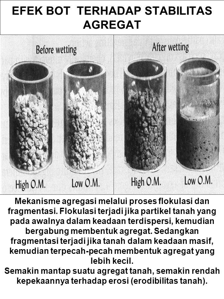 EFEK BOT TERHADAP STABILITAS AGREGAT Mekanisme agregasi melalui proses flokulasi dan fragmentasi. Flokulasi terjadi jika partikel tanah yang pada awal