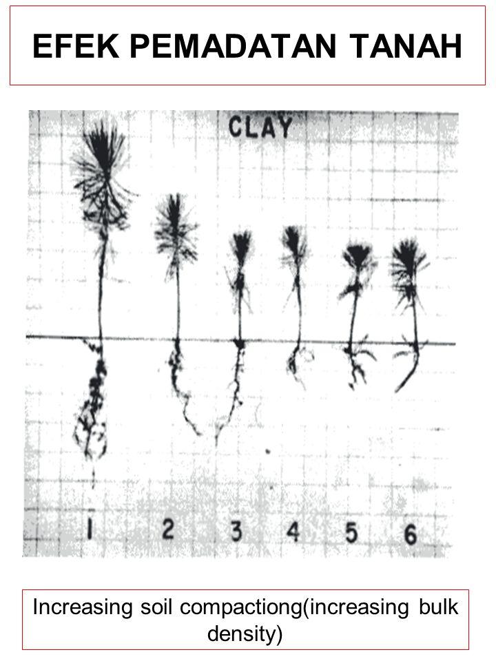 EFEK PEMADATAN TANAH Increasing soil compactiong(increasing bulk density)