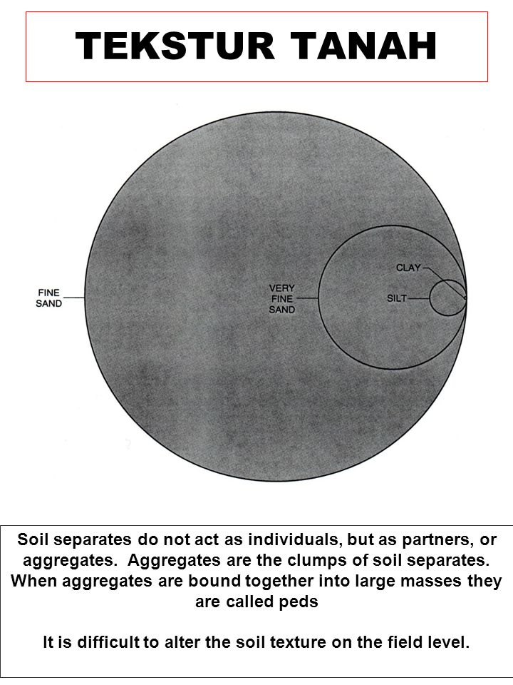 TEKSTUR TANAH Mineral fraction of soil is divided into are called soil separates.