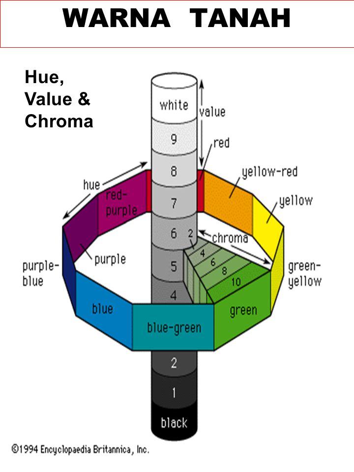 Hue, Value & Chroma WARNA TANAH