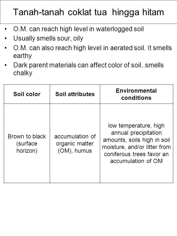 Tanah-tanah coklat tua hingga hitam O.M. can reach high level in waterlogged soil Usually smells sour, oily O.M. can also reach high level in aerated