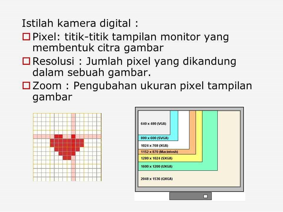 Istilah kamera digital :  Pixel: titik-titik tampilan monitor yang membentuk citra gambar  Resolusi : Jumlah pixel yang dikandung dalam sebuah gamba