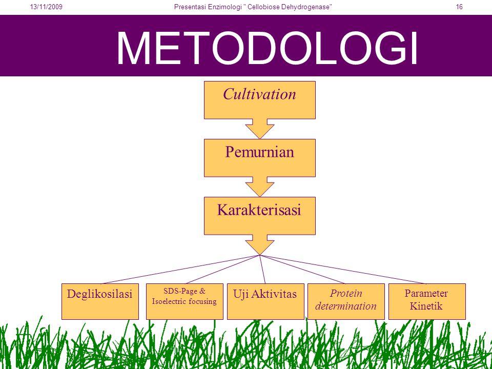 METODOLOGI Cultivation Pemurnian Karakterisasi Deglikosilasi SDS-Page & Isoelectric focusing Uji Aktivitas Parameter Kinetik Protein determination 13/