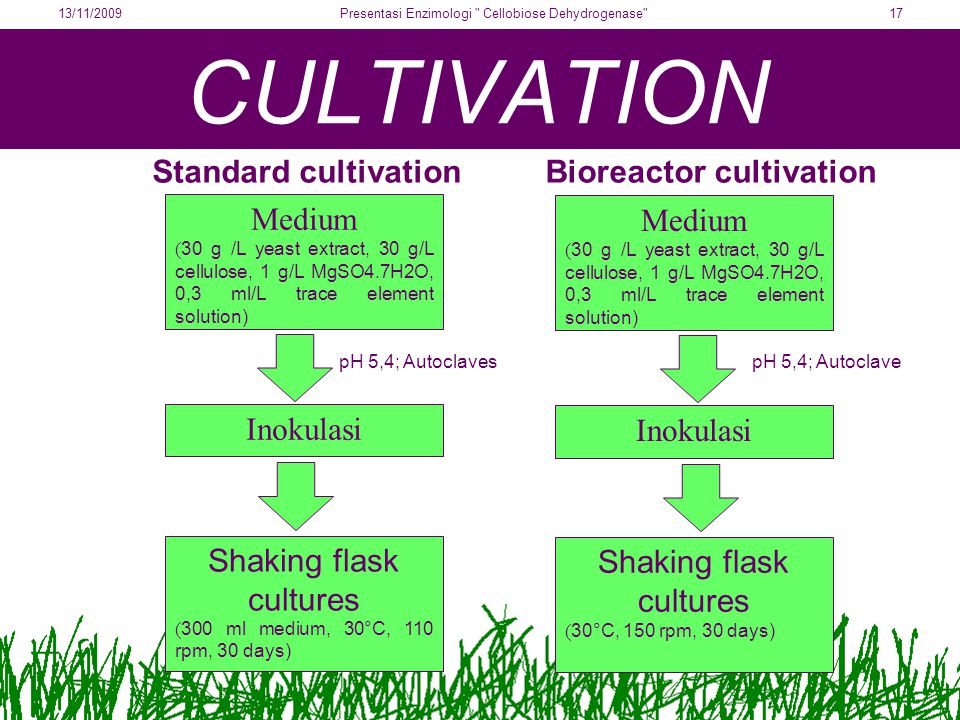 CULTIVATION Standard cultivationBioreactor cultivation Medium ( 30 g /L yeast extract, 30 g/L cellulose, 1 g/L MgSO4.7H2O, 0,3 ml/L trace element solution) Shaking flask cultures ( 300 ml medium, 30°C, 110 rpm, 30 days) Inokulasi pH 5,4; Autoclaves Medium ( 30 g /L yeast extract, 30 g/L cellulose, 1 g/L MgSO4.7H2O, 0,3 ml/L trace element solution) Shaking flask cultures ( 30°C, 150 rpm, 30 days) Inokulasi pH 5,4; Autoclave 13/11/200917Presentasi Enzimologi Cellobiose Dehydrogenase