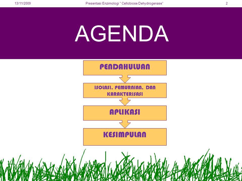AGENDA PENDAHULUAN ISOLASI, PEMURNIAN, DAN KARAKTERISASI APLIKASI KESIMPULAN 13/11/20092Presentasi Enzimologi