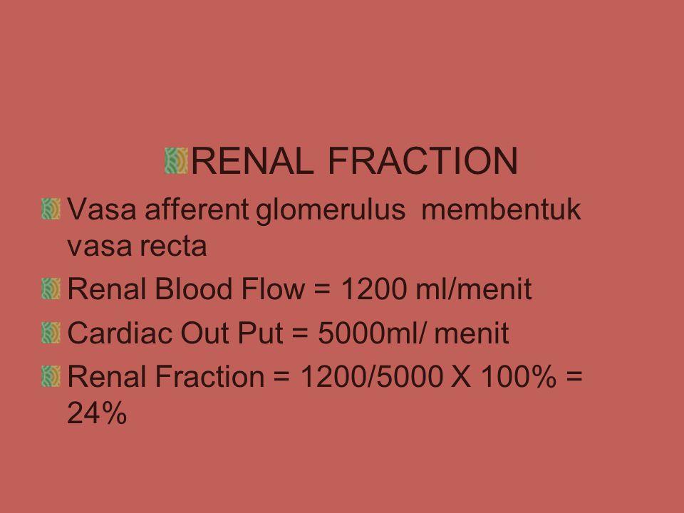 RENAL FRACTION Vasa afferent glomerulus membentuk vasa recta Renal Blood Flow = 1200 ml/menit Cardiac Out Put = 5000ml/ menit Renal Fraction = 1200/5000 X 100% = 24%