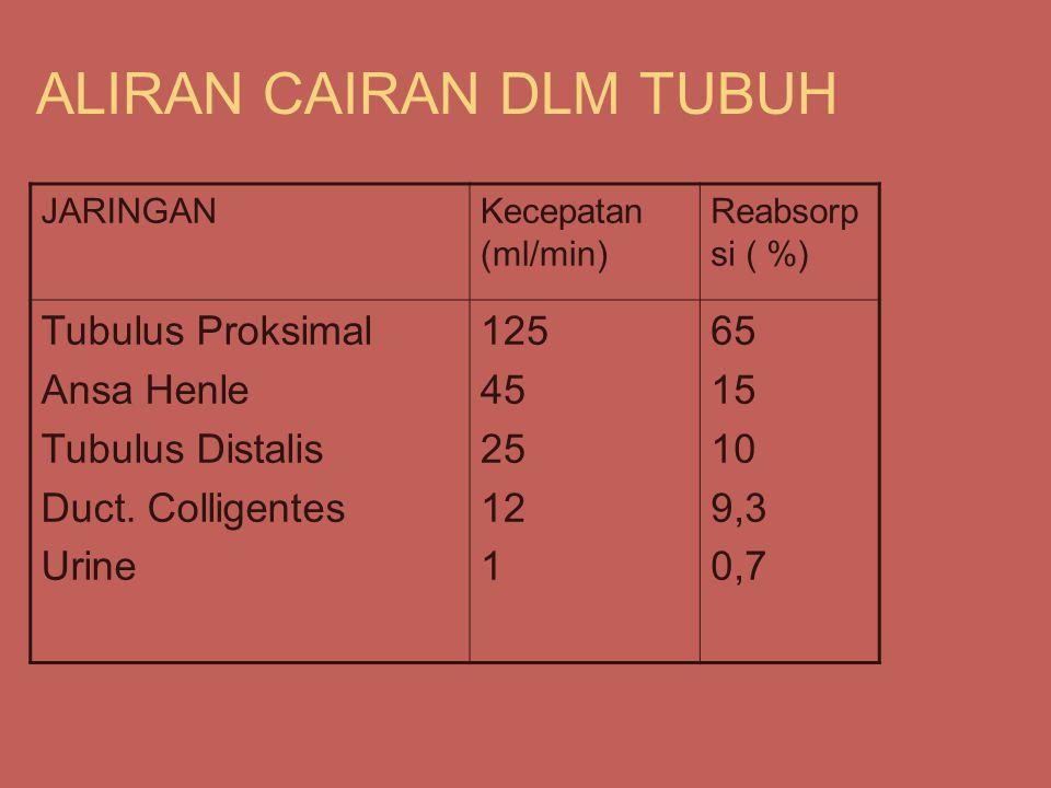 ALIRAN CAIRAN DLM TUBUH JARINGANKecepatan (ml/min) Reabsorp si ( %) Tubulus Proksimal Ansa Henle Tubulus Distalis Duct.