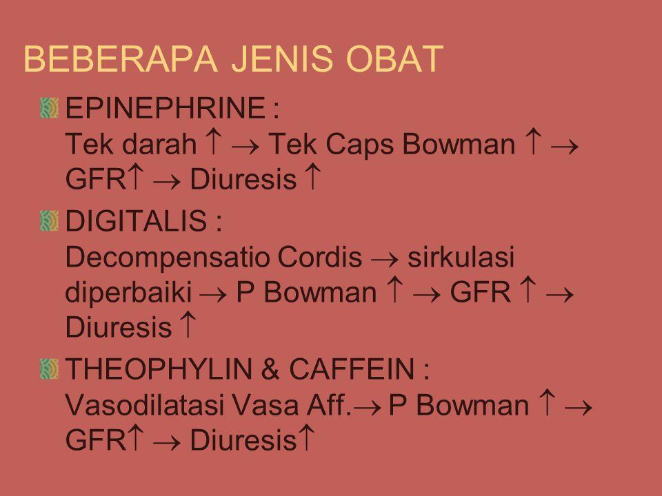 BEBERAPA JENIS OBAT EPINEPHRINE : Tek darah   Tek Caps Bowman   GFR   Diuresis  DIGITALIS : Decompensatio Cordis  sirkulasi diperbaiki  P Bowman   GFR   Diuresis  THEOPHYLIN & CAFFEIN : Vasodilatasi Vasa Aff.