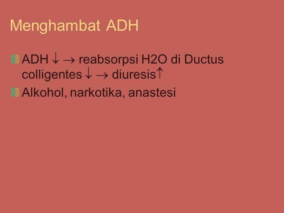 Menghambat ADH ADH   reabsorpsi H2O di Ductus colligentes   diuresis  Alkohol, narkotika, anastesi