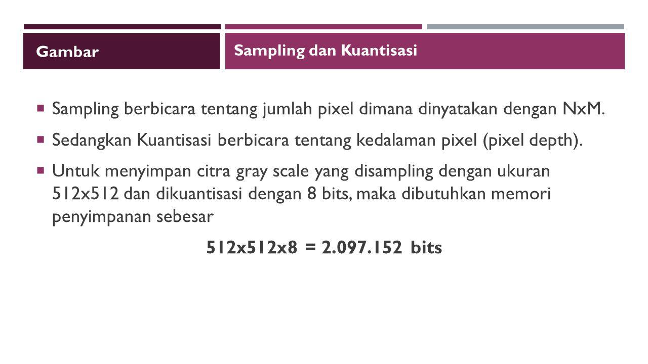 Gambar  Sampling berbicara tentang jumlah pixel dimana dinyatakan dengan NxM.