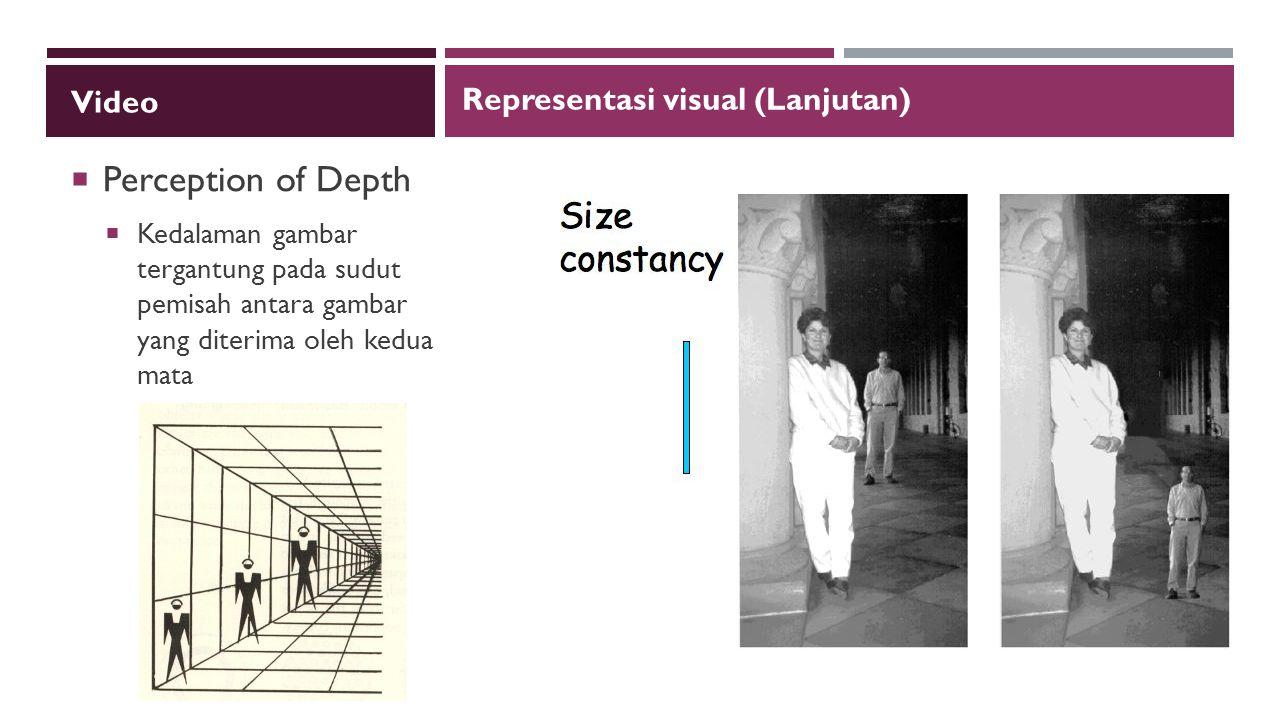 Video  Perception of Depth  Kedalaman gambar tergantung pada sudut pemisah antara gambar yang diterima oleh kedua mata Representasi visual (Lanjutan)