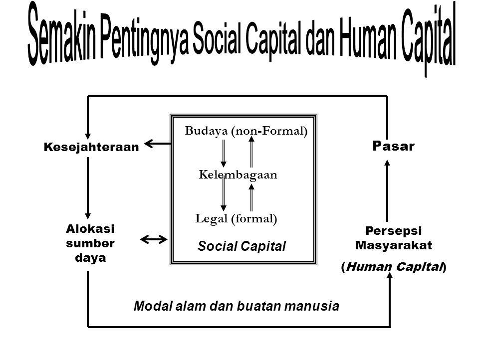 Budaya (non-Formal) Kelembagaan Legal (formal) Social Capital Modal alam dan buatan manusia Alokasi sumber daya Kesejahteraan Pasar Persepsi Masyarakat (Human Capital)