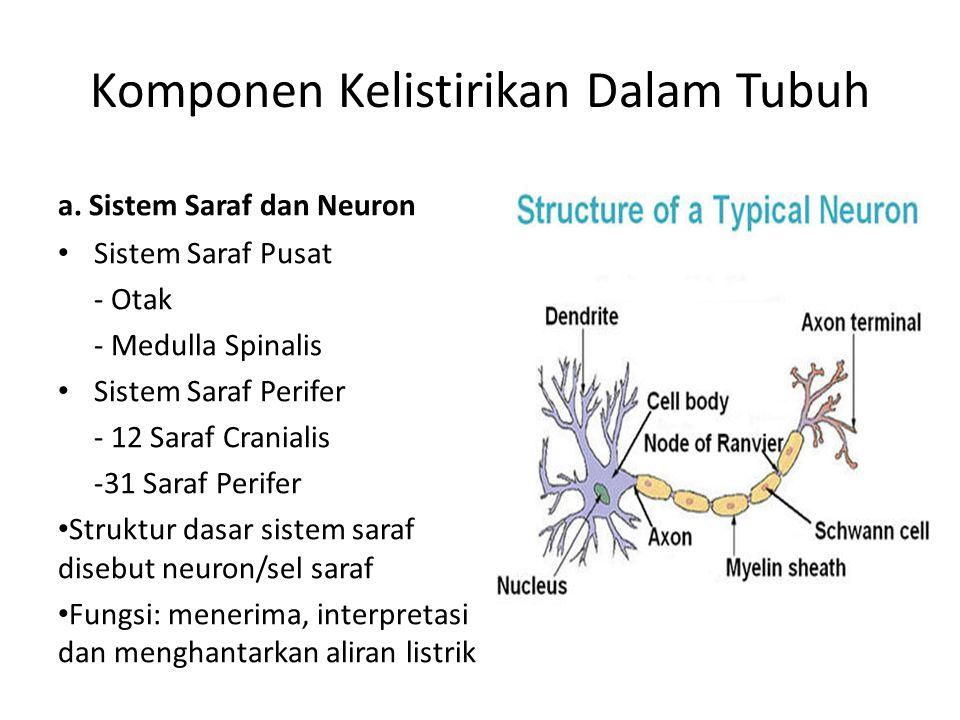 Komponen Kelistirikan Dalam Tubuh a. Sistem Saraf dan Neuron Sistem Saraf Pusat - Otak - Medulla Spinalis Sistem Saraf Perifer - 12 Saraf Cranialis -3
