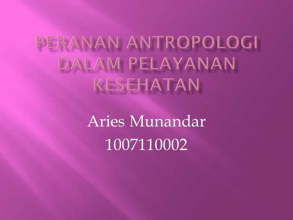 Aries Munandar 1007110002