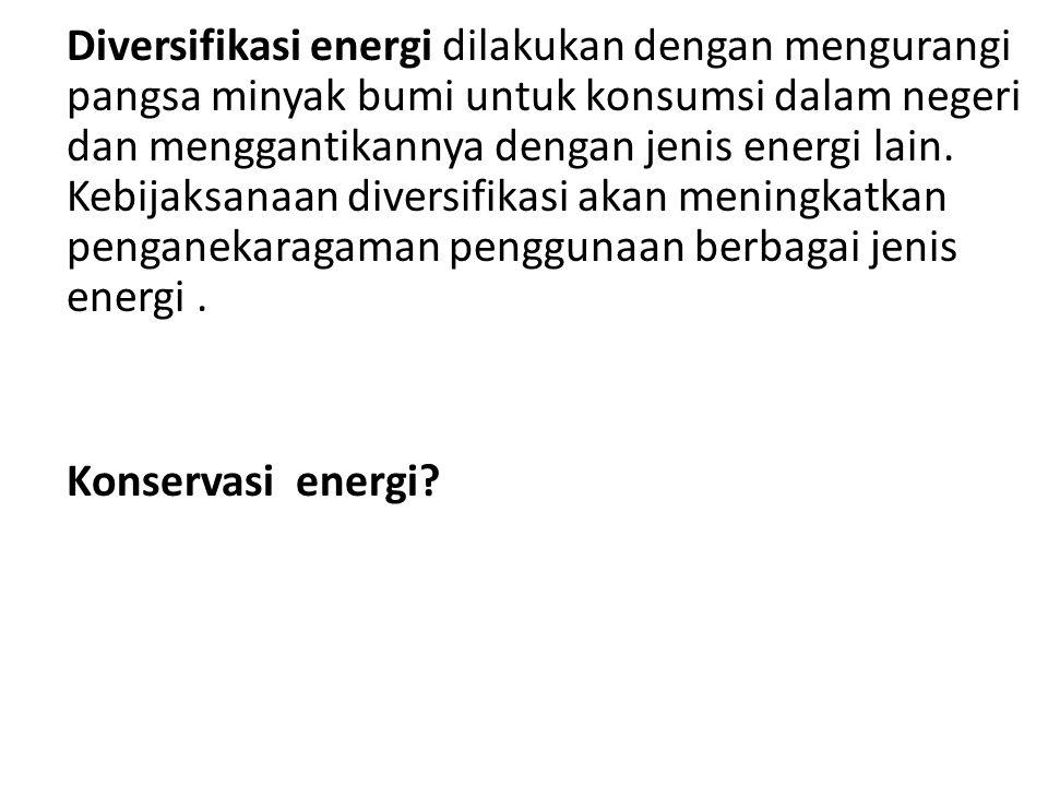 Diversifikasi energi dilakukan dengan mengurangi pangsa minyak bumi untuk konsumsi dalam negeri dan menggantikannya dengan jenis energi lain. Kebijaks