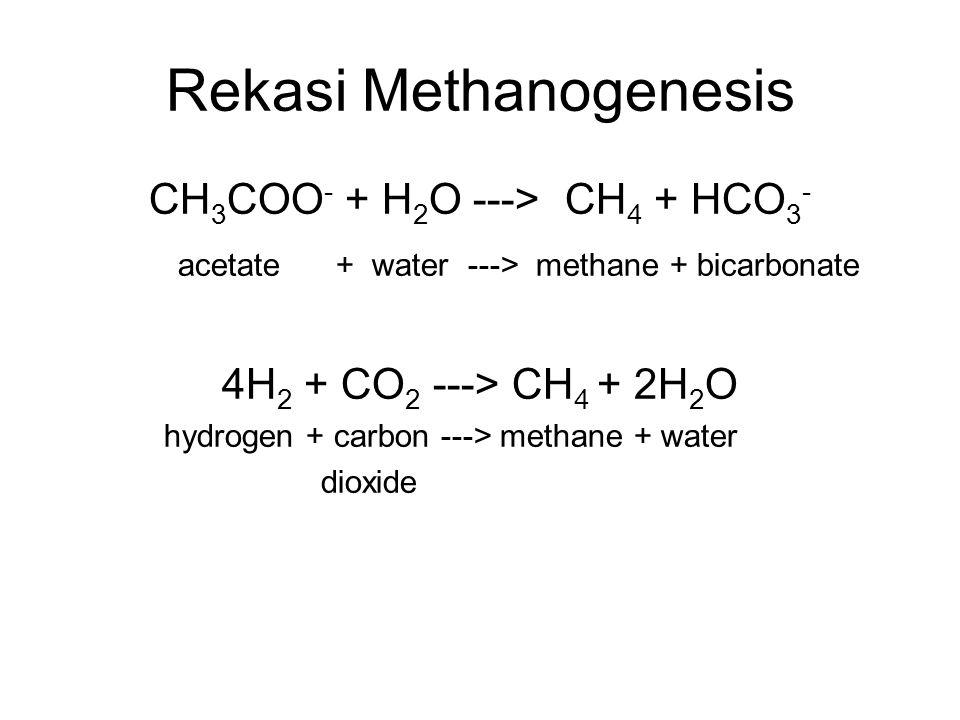 Gas Metana  Tidak berwarna, tidak berbau dan tidak berasa  Sumber metana yang lain: rawa, pertambangan batubara/minyak, proses fermentasi, dll.  Mu