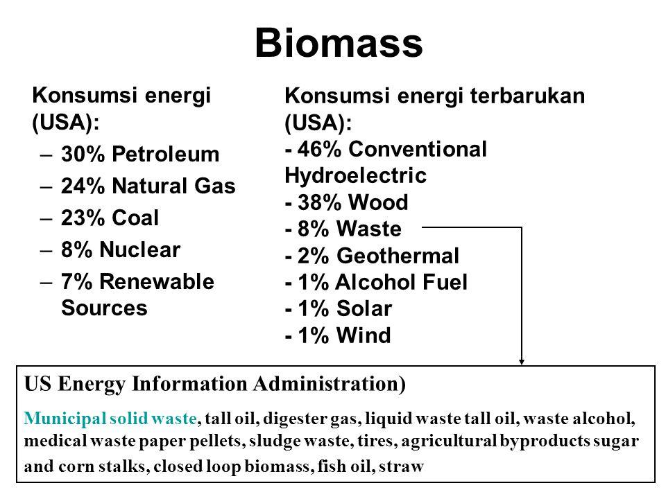 Pendahuluan Potensi biomass sebagai sumber energi:  Di Amerika: –bahan bakar berbasiskan biomass berpotensi 4-25% dalam pemenuhan kebutuhan energi –3
