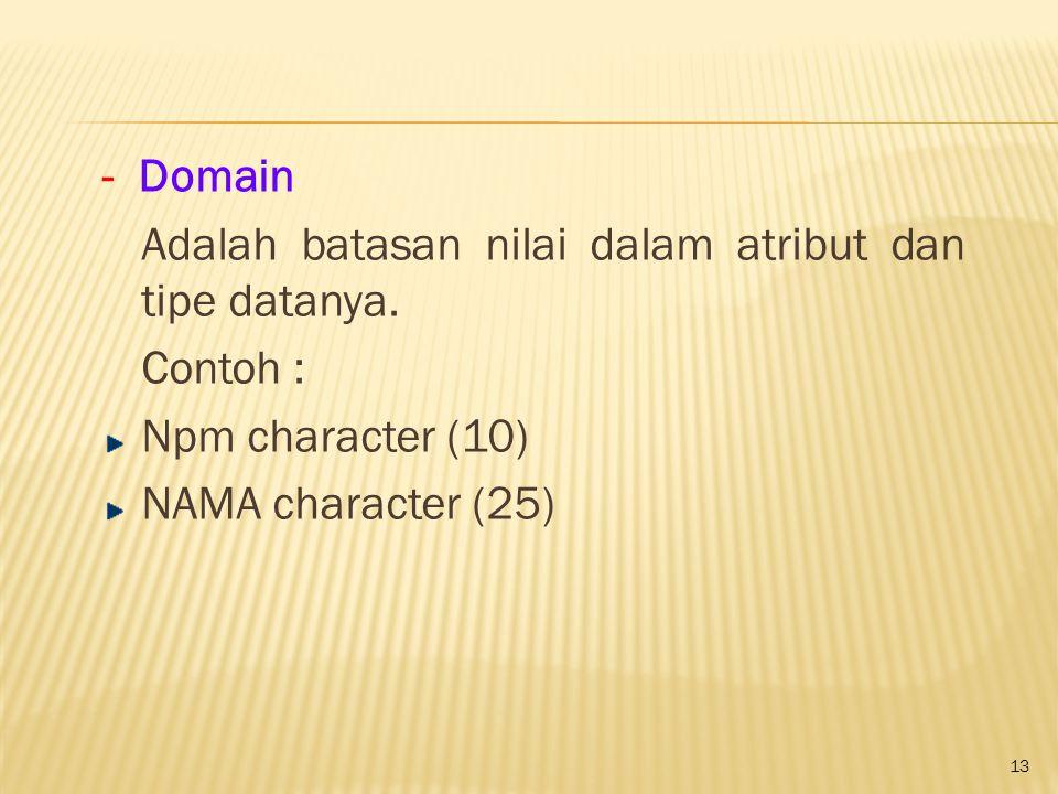 13 - Domain Adalah batasan nilai dalam atribut dan tipe datanya. Contoh : Npm character (10) NAMA character (25)