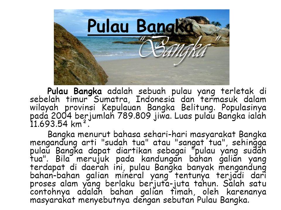 Pulau Bangka Pulau Bangka adalah sebuah pulau yang terletak di sebelah timur Sumatra, Indonesia dan termasuk dalam wilayah provinsi Kepulauan Bangka B