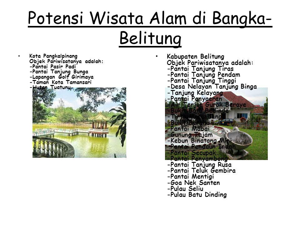 Potensi Wisata Alam di Bangka- Belitung Kota Pangkalpinang Objek Pariwisatanya adalah: -Pantai Pasir Padi -Pantai Tanjung Bunga -Lapangan Golf Girimay