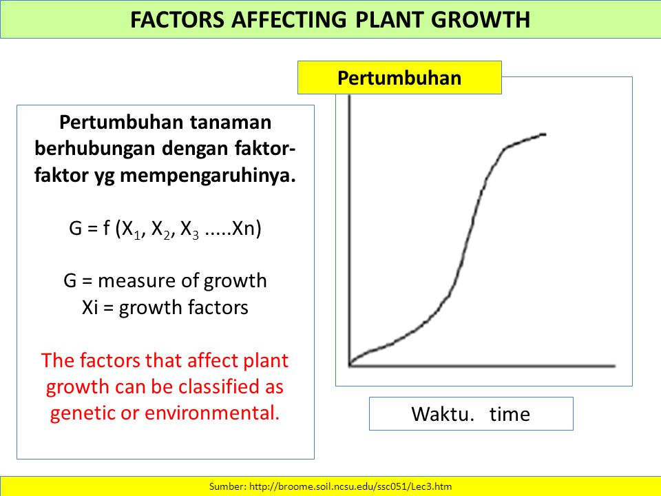 FACTORS AFFECTING PLANT GROWTH Sumber: http://broome.soil.ncsu.edu/ssc051/Lec3.htm Pertumbuhan tanaman berhubungan dengan faktor- faktor yg mempengaruhinya.