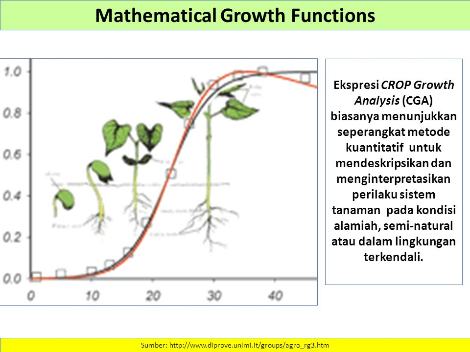 The probability of precipitation and the crop-yield, soil- depth function Angelos Pagoulatos.
