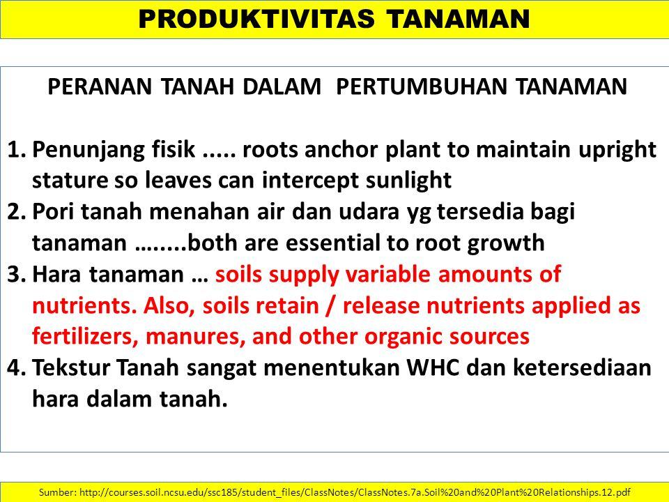 PRODUKTIVITAS TANAMAN PERANAN TANAH DALAM PERTUMBUHAN TANAMAN 1.Penunjang fisik..... roots anchor plant to maintain upright stature so leaves can inte