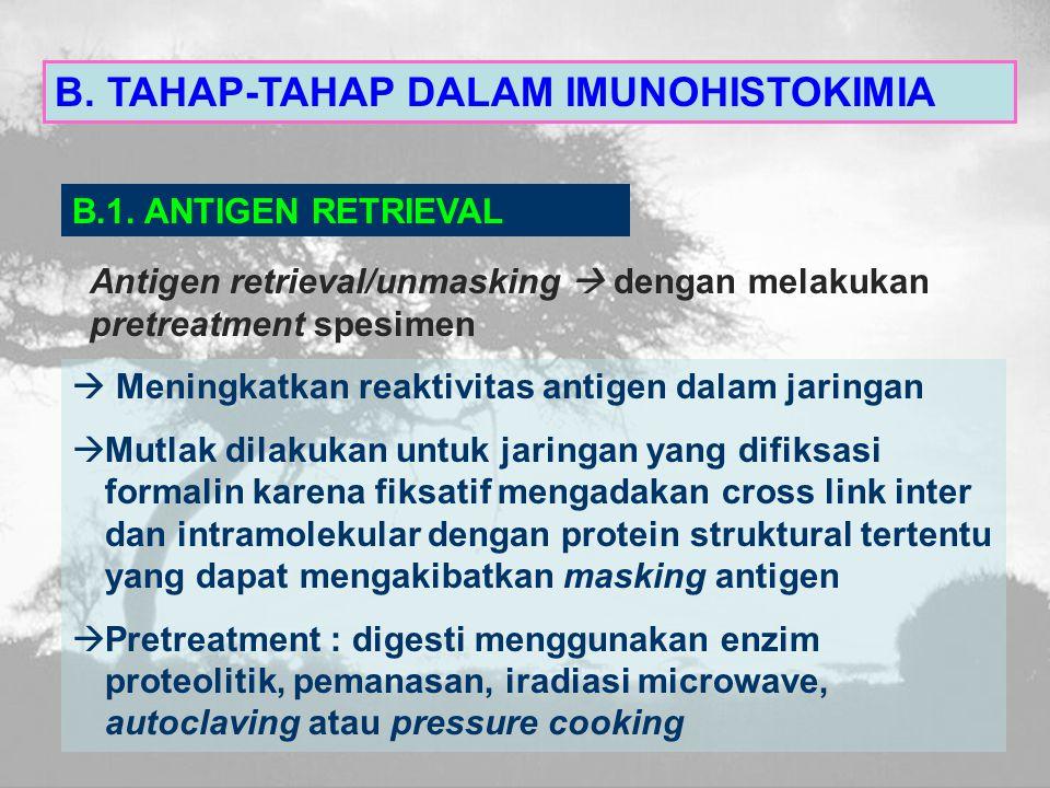 B.TAHAP-TAHAP DALAM IMUNOHISTOKIMIA B.1.