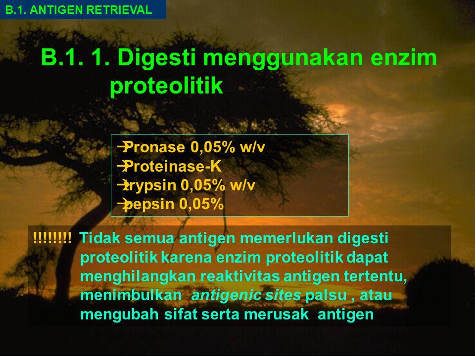 B.1.1. Digesti menggunakan enzim proteolitik B.1.
