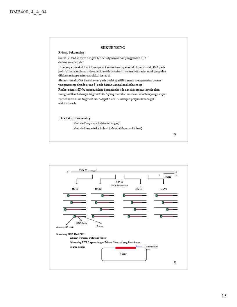 15 BMB400, 4_4_04 SEKUENSING Prinsip Sekuensing Sintesis DNA in vitro dengan DNA Polymerase dan penggunaan 2`, 3` dideoxynucleotida. Hilangnya molekul