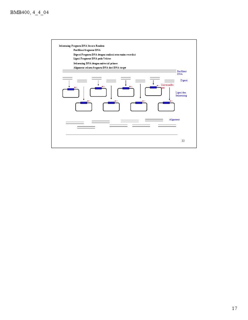 BMB400, 4_4_04 17 33 Sekuensing Fragmen DNA Secara Random Purifikasi fragment DNA Digesti Fragmen DNA dengan sonikasi atau enzim restriksi Ligasi Frag