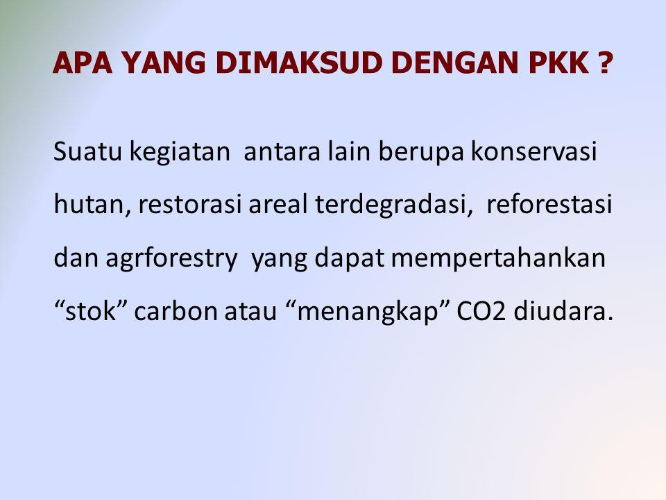 APA YANG DIMAKSUD DENGAN PKK ? Suatu kegiatan antara lain berupa konservasi hutan, restorasi areal terdegradasi, reforestasi dan agrforestry yang dapa