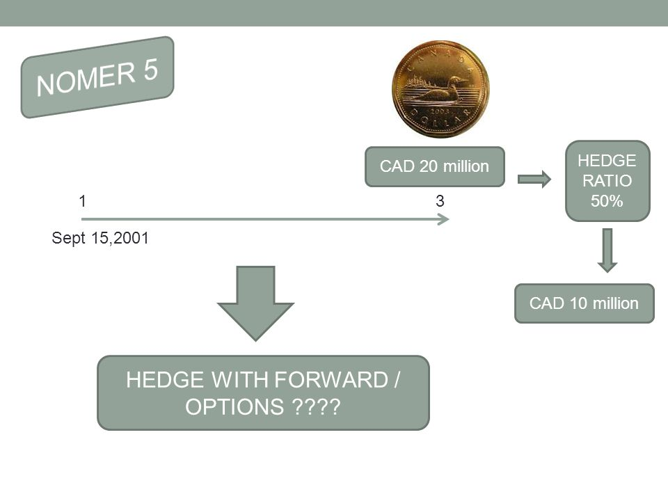 31 CAD 20 million HEDGE WITH FORWARD / OPTIONS ???? HEDGE RATIO 50% CAD 10 million Sept 15,2001