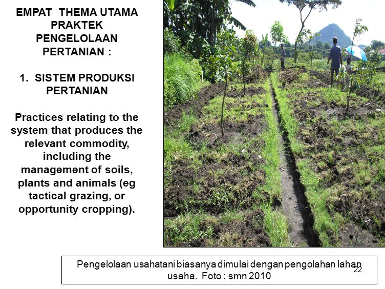 22 EMPAT THEMA UTAMA PRAKTEK PENGELOLAAN PERTANIAN : 1. SISTEM PRODUKSI PERTANIAN Practices relating to the system that produces the relevant commodit